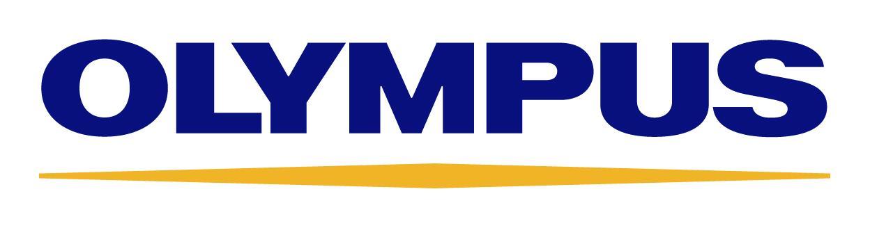 olympus-financial-statement-fraud